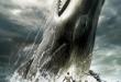 balena_tonino