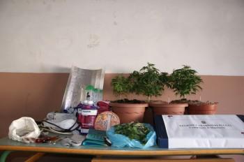 manduria-cannabis-armadio