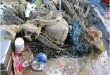 rifiuti-raccolti-da-una-rete-a-strascico