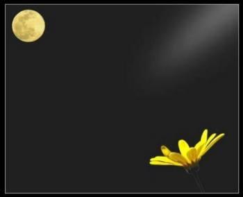 solitudine-lunasolepart