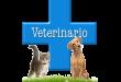 Croce azzura veterinaria Maruggio