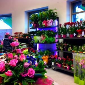 Rapina negozio di fiori san giorgio jonico