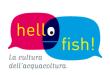 La Voce di Maruggio - Hello fish