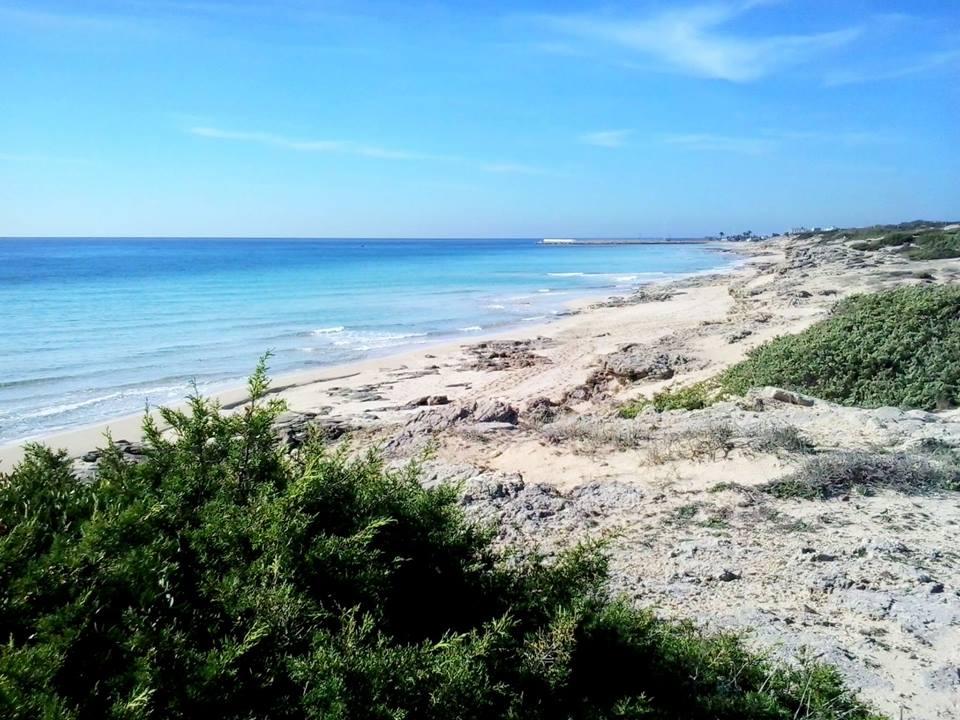 Campomarino di Maruggio Spiaggia Giannarelli 10 novembre 2015 (Estate di San Martino)