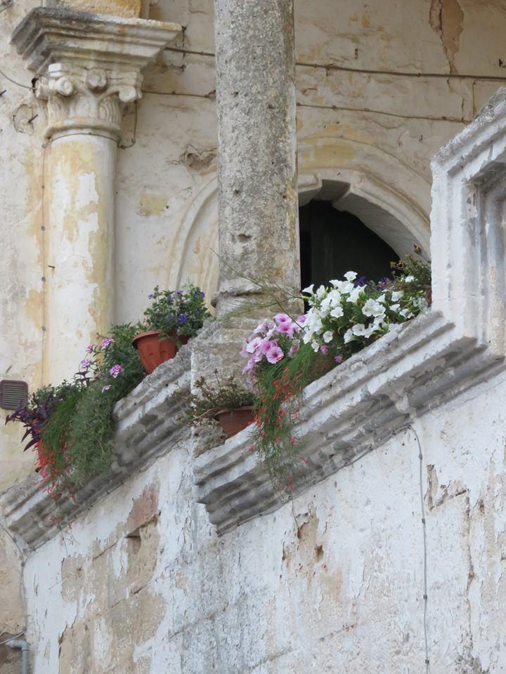 Balconi Fioriti  Allestimento n° 9