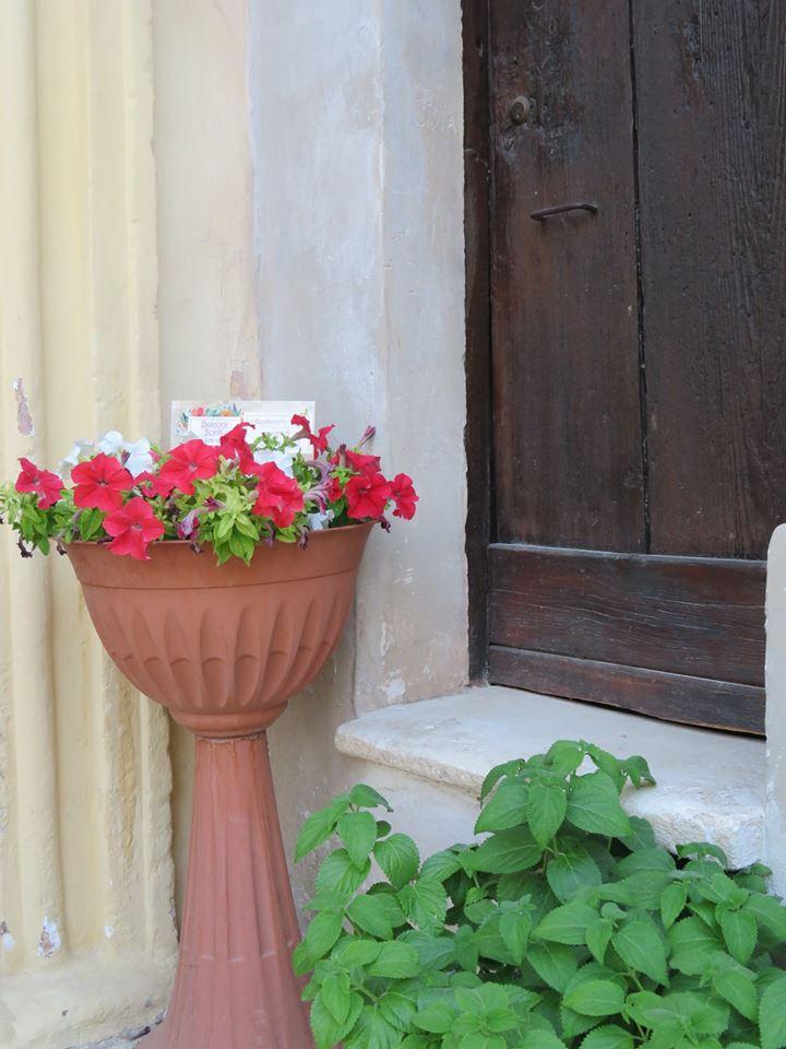 Balconi Fioriti  Allestimento n° 8