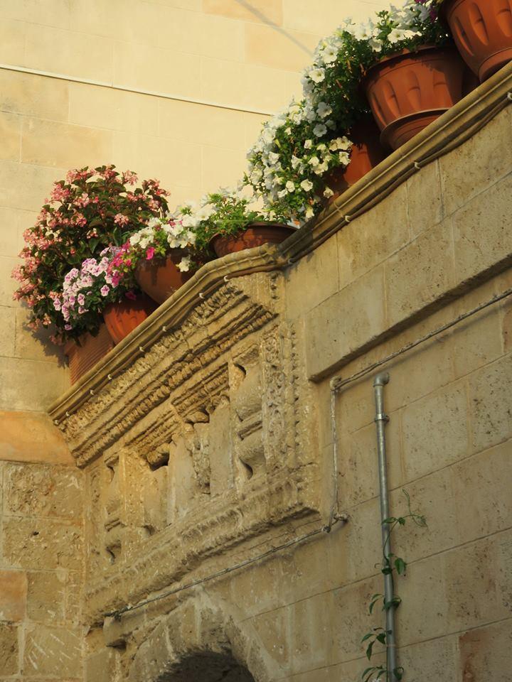 Balconi Fioriti  Allestimento n° 3