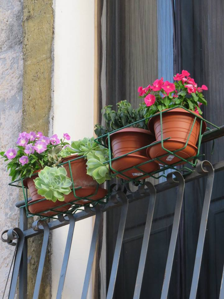 Balconi Fioriti  Allestimento n° 1
