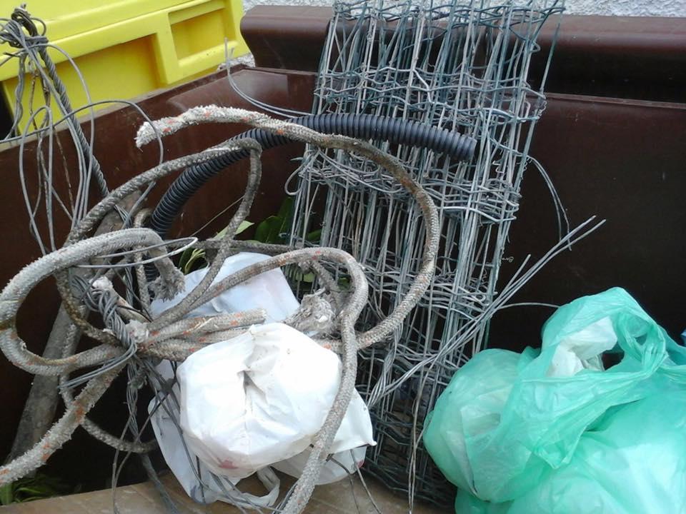 Ecco cosa si trova nel cassonetto del rifiuto organico.