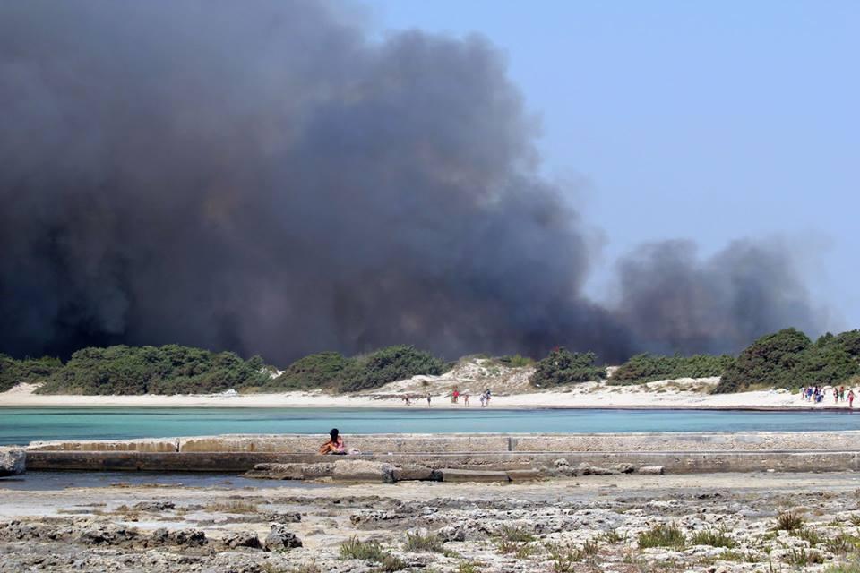 Fuoco distrugge macchia su costa Taranto